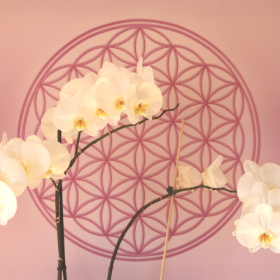 Orchidee vor Blume des Lebens